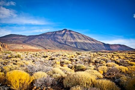 Volcanic lava landscape on Teide, Tenerife, Canary Islands, Spain.
