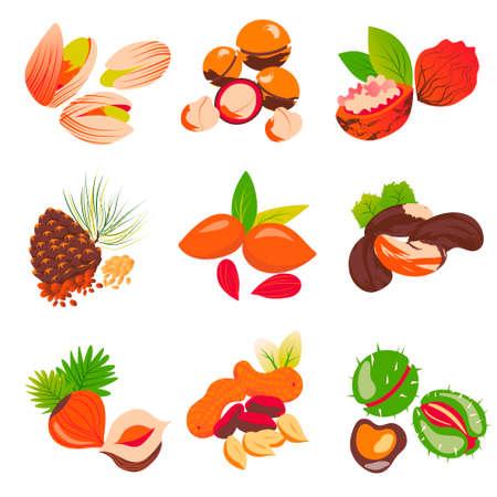 isolate illustration set of nuts on white background Vektorgrafik
