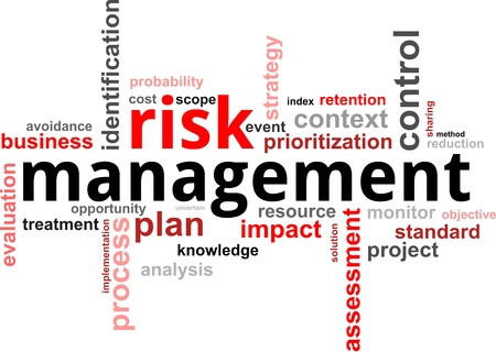 dirección empresarial: Una nube de palabras de los elementos de gestión de riesgos relacionados con el