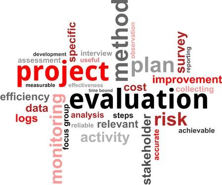 evaluacion: Una nube de palabras de los elementos de evaluación de proyectos relacionados con la