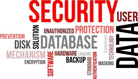 masking: Una nube de palabras de los elementos relacionados con la seguridad de datos
