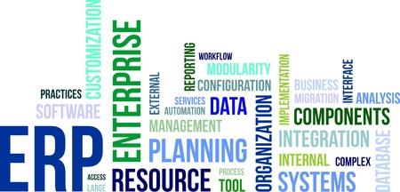 Ein Wort-Wolke von Enterprise Resource Planning zugehörige Artikel