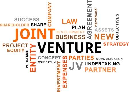 Ein Wort-Wolke von Joint Venture zugehörige Artikel