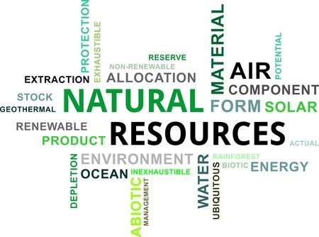 recursos naturales: Una nube de palabras de los recursos naturales artículos relacionados