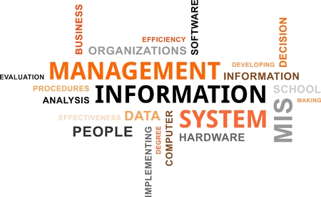 management system: A word cloud of management information system related items
