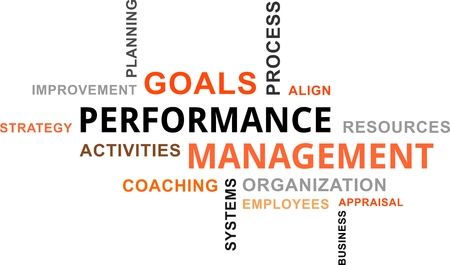 appraisal: A word cloud of performance management related items