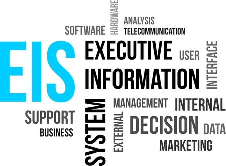 eis: A word cloud of executive information system related items