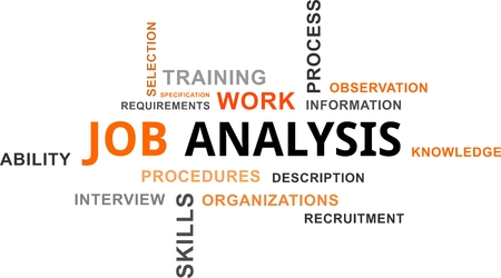 job descriptions: A word cloud of job analysis related items