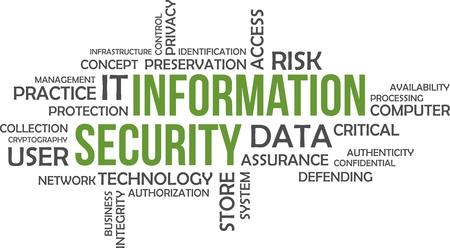 Una parola nuvola di elementi di sicurezza delle informazioni correlate