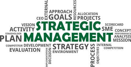 strategic management: A word cloud of strategic management related items