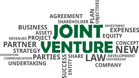 entity: A word cloud of joint venture related items