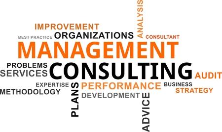 Eine Wortwolke von Management beratenden in Verbindung stehenden Einzelteilen Standard-Bild - 84881611