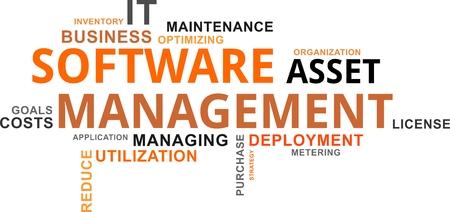 ソフトウェア資産管理関連項目のワード・クラウド  イラスト・ベクター素材
