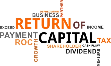 A word cloud of return of capital related items