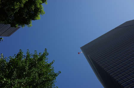 Building Cranes against Blue Sky