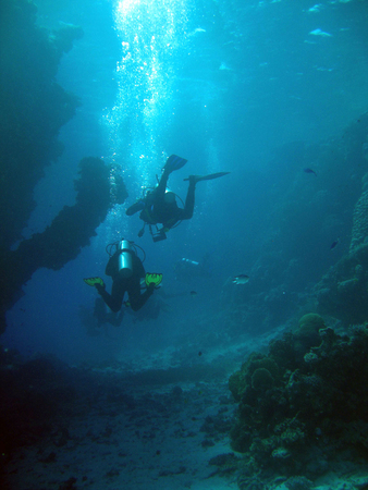 Diving off the coast of Marsala Alam
