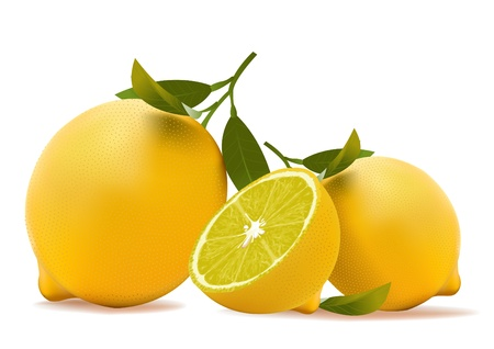 lemon. realistic vector illustration Stock Vector - 9551001