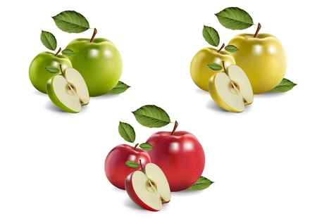 jams: apples. realistic vector illustration Illustration