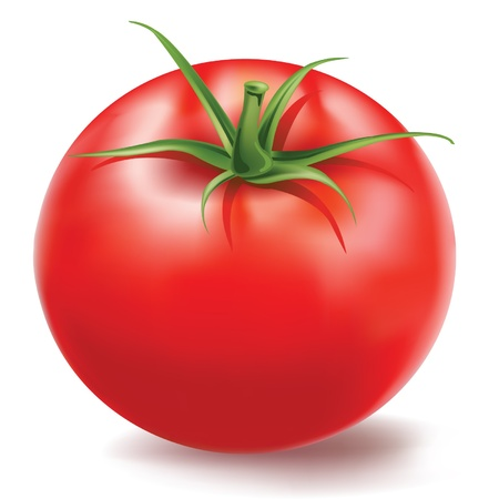 Tomate Illustration