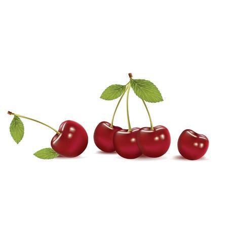 frutos rojos: cereza