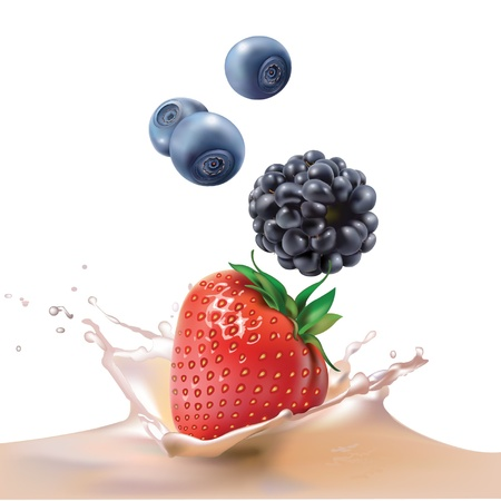 sweet sauce: milk, blackberries, blueberries and strawberries  realistic vector illustration