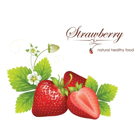 wild berry: beautiful strawberries  illustration of a realistic