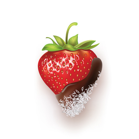 Beautiful strawberry and coconut. vector illustration of a realistic Vector