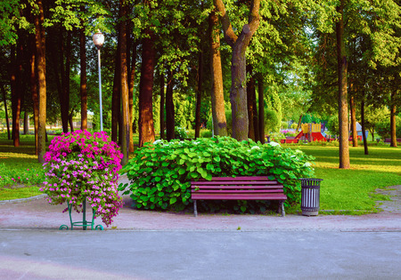 A cozy bench near a flowerbed in a beautiful area of the Park.