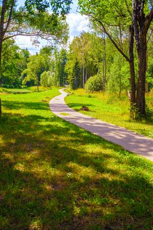 Kurvenreiche Gasse im Park im Sommer an einem sonnigen Tag Standard-Bild