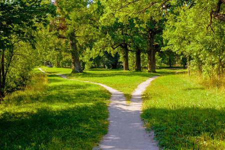 Der breite Fußgängerweg im Park ist zweigeteilt und verteilt sich auf die gegenüberliegenden Seiten Standard-Bild