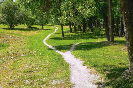 A wide walking trail in the park is divided into two narrow