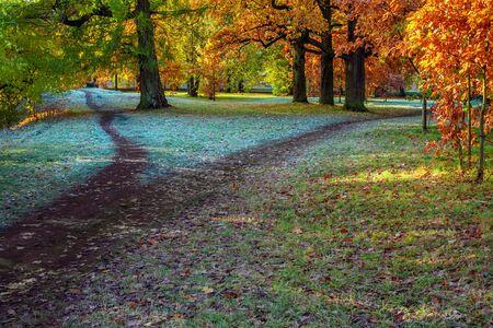 Dzielenie chodnika w parku jesienią