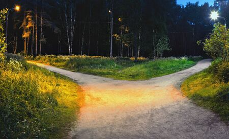 The road in the park at night is divided into two hiking trails diverging in different directions, illuminated by electric light.