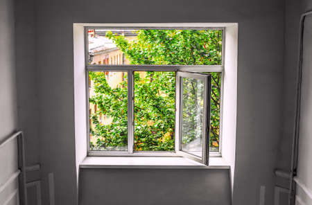 A plastic window with an open sash from the room to the outside overlooking the bright green foliage of the tree and the upper floors of the building 版權商用圖片
