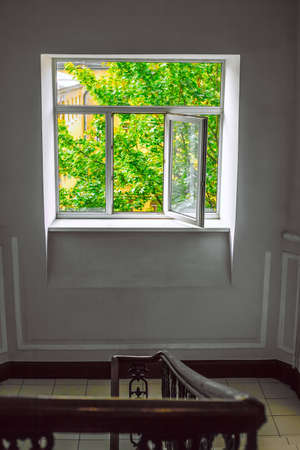 A plastic window in the stairwell with an open sash overlooking the bright green foliage of the tree and the upper floors of the building. 版權商用圖片
