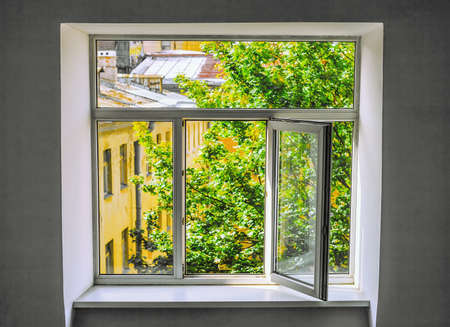 A new close-up window with an open sash overlooking the bright green foliage of the tree and the upper floors of the building.