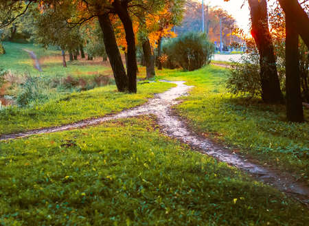 Combining paths. In the Park, two paths merged into one. Conceptual autumn landscape.