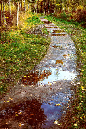 Bad route. Wet, with many puddles, muddy path in the Park in the fall after the rain