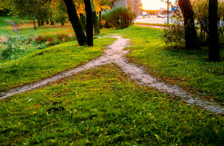 Combining paths. In the Park, two little narrow footpath merged into one. Conceptual autumn landscape. 스톡 콘텐츠