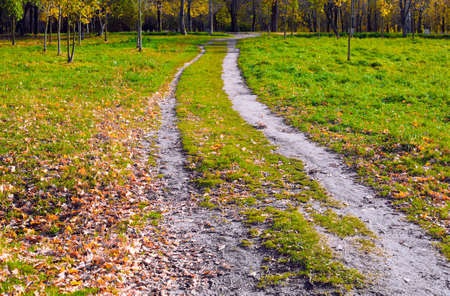Two ways among the grass are parallel and lead in the same direction. Autumn landscape 版權商用圖片