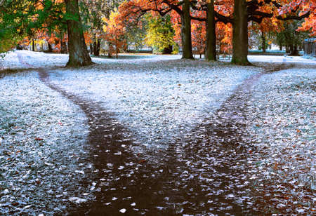 The wide trail is divided into two paths diverging in different directions. Autumn landscape with fallen leaves, frost and early snow on the ground and grass