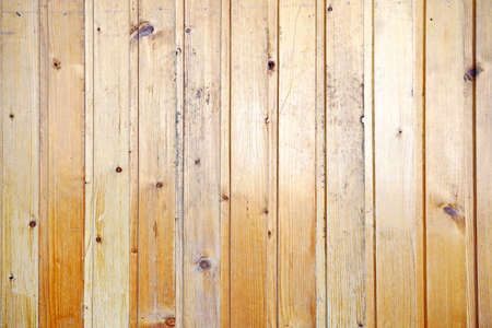 Painted wooden planks and cutaway wood structure used as a base and backgrounds.