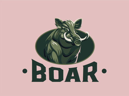 Wild boar with tusks. Vector illustration.