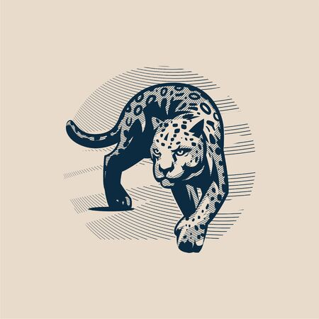 Panther or cougar, wild cat moves, goes smoothly forward, rearranging its paws, against the sky. Vector illustration.