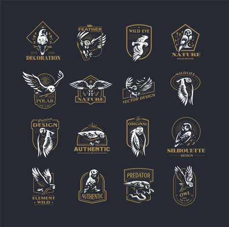 Set of vector illustrations. Owls in different poses, flying, sitting on branches. Vettoriali