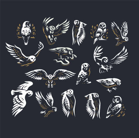 Set of vector illustrations. Owls in different poses, flying, sitting on branches.