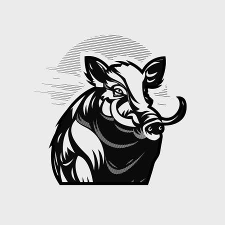 An adult wild boar with large tusks. Hog. Vector illustration. Ilustração