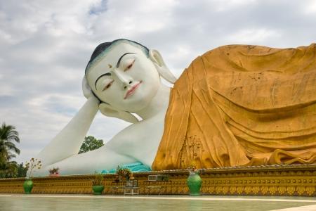 banian tree: Giant sleeping Buddha  100 mt  , Bago, myanmar  Stock Photo