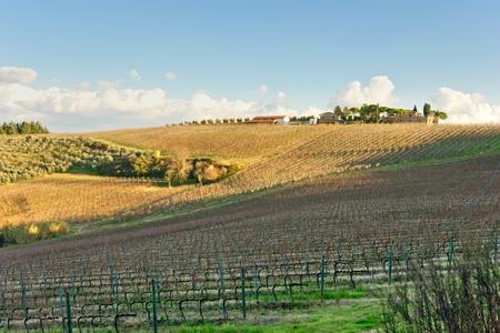 Tuscany landscape, Chianti area, Italy. Stock Photo - 8570383