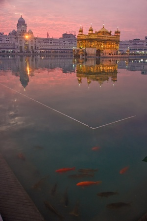 Golden Temple at sunset, Amritsar, Punjab, India. photo
